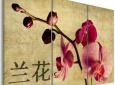 Kép - Triptych, Orient and orchid