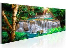 Kép - Tropical Waterfall