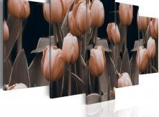 Kép - Tulipánok szépia
