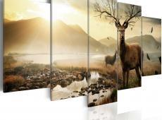 Kép - Tundra and deer