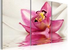 Kép - Unusual orchid - triptych