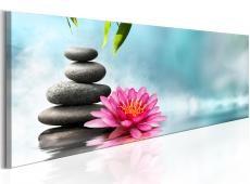 Kép - Water Lily and Zen Stones