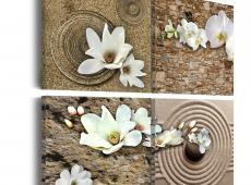 Kép - White calla
