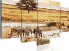 Kép - Zebras on a savannah