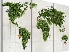 Kép - Zöld föld a pillangók - triptych