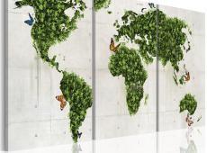 Kép - Zöld területek
