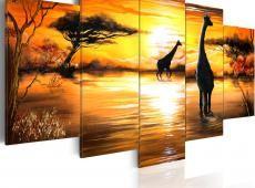 Kép - Zsiráfok at öntözés lyuk