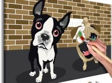 Kifestő - Cute Dogs