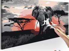 Kifestő - Elephant (Africa)