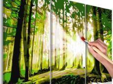 Kifestő - Forest (Spring)