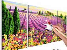 Kifestő - Lavender Field