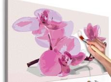 Kifestő - Orchid Flowers