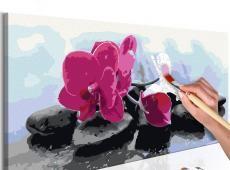 Kifestő - Orchid With Zen Stones