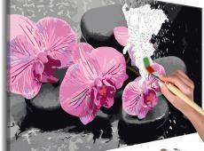 Kifestő - Orchid With Zen Stones (Black Background)
