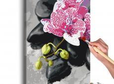 Kifestő - Pink Orchid