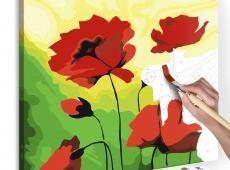 Kifestő - Poppies