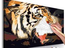 Kifestő - Tiger Roar