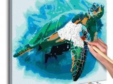 Kifestő - Turtle