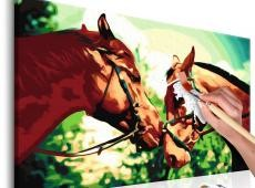 Kifestő - Two Horses