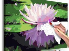 Kifestő - Water Lily