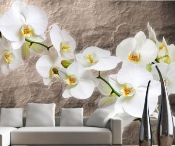 Színpompás virágok gondozás nélkül