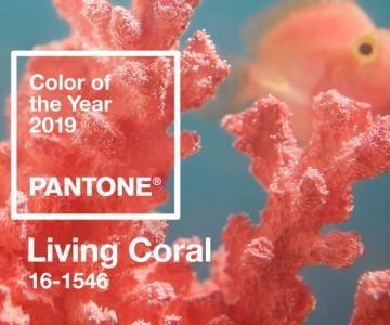 2019: így mutat az év színe a lakásodban