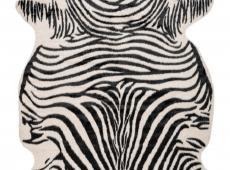 Philippines - Manila Zebra