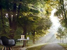 XXL Fotótapéta - Morning Walk II